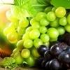 grapes_kazan_s